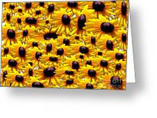 Susans Greeting Card