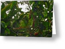Suspended Moment Greeting Card