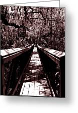 Suspension Bridge Greeting Card