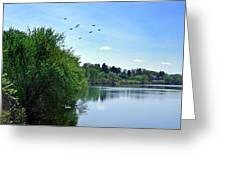 Susquehanna Serenty Greeting Card
