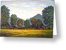 Sutter Buttes In Springtime Greeting Card