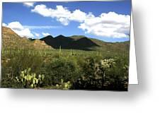 Sw194 Southwest Greeting Card