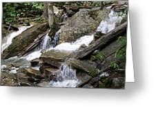 Swallow Falls Greeting Card