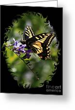 Swallowtail Butterfly 1 With Swirly Frame Greeting Card