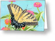Swallowtail Butterfly And Zinnias Greeting Card