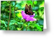 Swallowtail In Flower Greeting Card