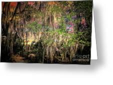 Swamp 2 Greeting Card