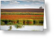 Swamp And Field Landscape Autumn Season Greeting Card