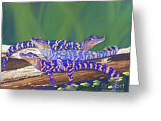 Swamp Babies Greeting Card by Tracy L Teeter