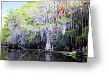 Swamp Colors Greeting Card