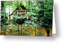Swamp Hut In Honduras Greeting Card
