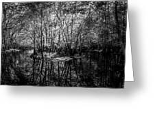 Swamp Island Greeting Card
