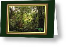 Swamp L A With Decorative Ornate Printed Frame. Greeting Card