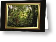 Swamp L B With Decorative Ornate Printed Frame. Greeting Card