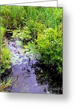 Swamp Plants Greeting Card