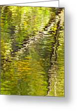 Swamp Reflections Abstract Greeting Card