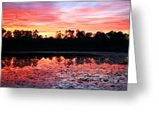 Swamp Sunset Greeting Card