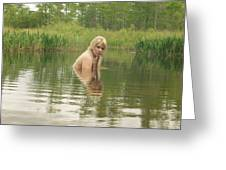 Swamp Witch Greeting Card
