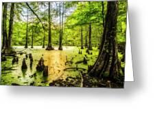 Swampland Dreams Greeting Card