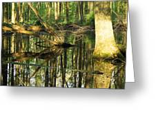 Swamps Are Beautiful Too Greeting Card