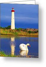 Swan At The Lighthouse Greeting Card