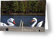 Swan Boats Greeting Card by Joanna Madloch