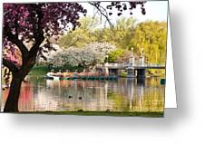 Swan Boats With Apple Blossoms Greeting Card by Susan Cole Kelly