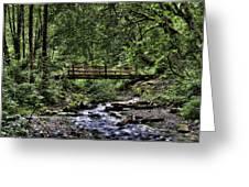Swan Creek Park Greeting Card