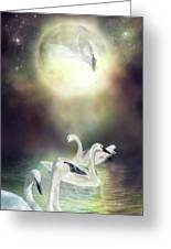 Swan Dreams Greeting Card