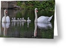 Swan Family Portrait Greeting Card