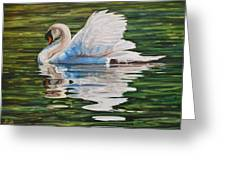 Swan Greeting Card by Henry David Potwin