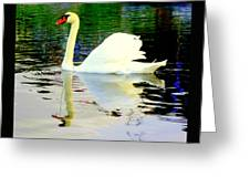 Who Is Afraid Of The Big White Swan  Greeting Card by Hilde Widerberg