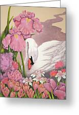 Swan In Pink Greeting Card