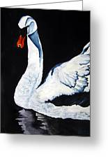 Swan In Shadows Greeting Card
