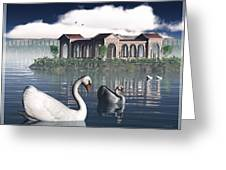Swan Island Greeting Card