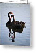 Swan Lake 5 Greeting Card