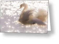 Swan Of The Glittery Early Evening Greeting Card