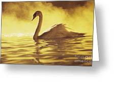 Swan On Gold Greeting Card