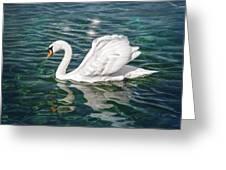 Swan On Lake Geneva Switzerland  Greeting Card