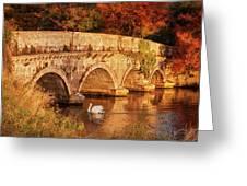 Swan On The Rye Water - Kildare, Ireland Greeting Card