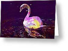 Swan Water Bird Water River  Greeting Card