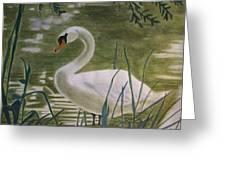 Swanlike Neck Greeting Card