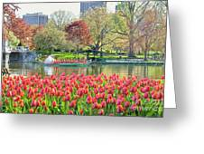 Swans And Tulips 2 Greeting Card