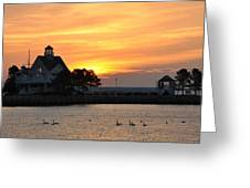 Swans At Sunrise  Greeting Card