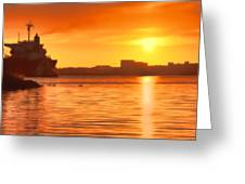 Swans At Sunset Greeting Card