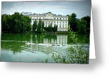Swans On Austrian Lake Greeting Card