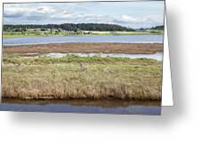 Swantown Lake Estuary Greeting Card