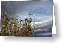 Sweeping The Clouds Away Greeting Card