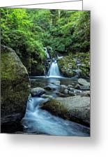 Sweet Creek Falls Vertical Greeting Card