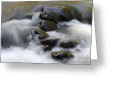 Sweet Creek Oregon 14 Greeting Card